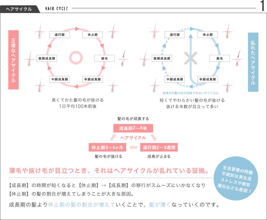 1.ヘアサイクル HAIR CYCLE