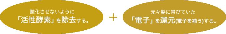 酸化させないように「活性酵素」を除去する。+元々髪に帯びていた「電子」を還元(電子を補う)する。