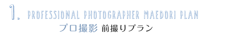 1.professional photographer プロ撮影 前撮りプラン