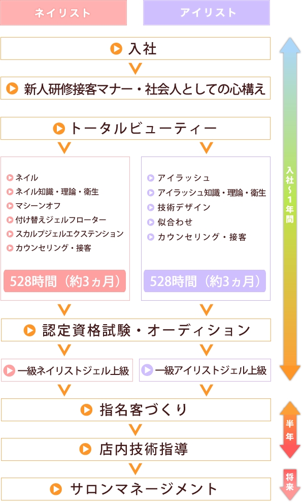 ネイリスト・アイリスト キャリアコース体系図